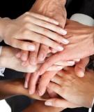 Hướng tới đội hình tiếp thị năng động và hiệu quả