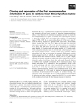 Báo cáo khoa học: Cloning and expression of the first nonmammalian interleukin-11 gene in rainbow trout Oncorhynchus mykiss