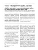 Báo cáo khoa học:  Expression, purification and catalytic activity of Lupinus luteus asparagine b-amidohydrolase and its Escherichia coli homolog