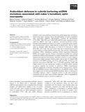 Báo cáo khoa học: Antioxidant defences in cybrids harboring mtDNA mutations associated with Leber's hereditary optic neuropathy