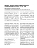 Báo cáo khoa học:  Age-related impairment of mitochondrial matrix aconitase and ATP-stimulated protease in rat liver and heart