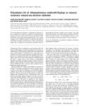 Báo cáo khoa học:  Thioredoxin Ch1 of Chlamydomonas reinhardtii displays an unusual resistance toward one-electron oxidation