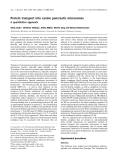 Báo cáo khoa học:  Protein transport into canine pancreatic microsomes A quantitative approach