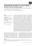 Báo cáo khoa học: Protein expressed by the ho2 gene of the cyanobacterium Synechocystis sp. PCC 6803 is a true heme oxygenase