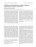 Báo cáo khoa học:  Microfibril-associated glycoprotein-1 binding to tropoelastin