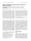 Báo cáo khoa học: Molecular identification of monomeric aspartate racemase from Bifidobacterium bifidum