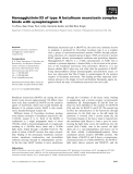 Báo cáo khoa học: Hemagglutinin-33 of type A botulinum neurotoxin complex binds with synaptotagmin II