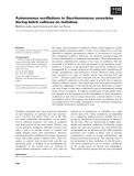 Báo cáo khoa học: Autonomous oscillations in Saccharomyces cerevisiae during batch cultures on trehalose