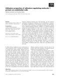 Báo cáo khoa học: Adhesion properties of adhesion-regulating molecule 1 protein on endothelial cells