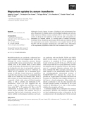 Báo cáo khoa học: Neptunium uptake by serum transferrin