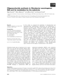 Báo cáo khoa học: Oligosaccharide synthesis in Fibrobacter succinogenes S85 and its modulation by the substrate