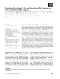 Báo cáo khoa học: Functional analysis of the methylmalonyl-CoA epimerase from Caenorhabditis elegans