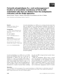 Báo cáo khoa học: Cytosolic phospholipase A2-a and cyclooxygenase-2 localize to intracellular membranes of EA.hy.926 endothelial cells that are distinct from the endoplasmic reticulum and the Golgi apparatus