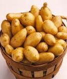 Cách bảo quản khoai tây không bị mọc mầm