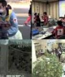 Disaster relief emergency fund (DREF)  Zimbabwe: Floods
