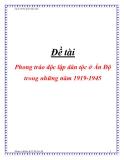 Đề tài Phong trào độc lập dân tộc ở Ấn Độ trong những năm 1919 -1945