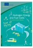 Hydrogen Energy and Fuel Cells