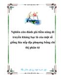 NGHIÊN CỨU ĐÁNH GIÁ TIỀM NĂNG DI TRUYỀN KHÁNG BẠC LÁ CỦA MỘT SỐ GIỐNG LÚA NẾP ĐỊA PHƯƠNG BẰNG CHỈ THỊ PHÂN TỬ