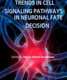Trends in Cell Signaling Pathways in Neuronal Fate Decision  Edited by Sabine Wislet-Gendebien