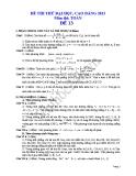 Đề thi thử đại học 2013 Môn Toán khối B Đề 13