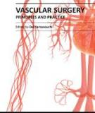 Vascular Surgery – Principles and Practice Edited by Dai Yamanouchi