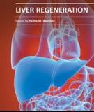 Liver Regeneration Edited by Pedro M. Baptista