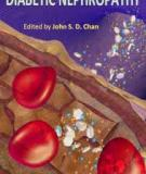 Diabetic Nephropathy Edited by John S. D. Chan