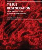 TISSUE REGENERATION – FROM BASIC BIOLOGY TO CLINICAL APPLICATIONE dited by Jamie Davies