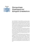 Plant physiology - Chapter  9  Photosynthesis: Physiological and Ecological Considerations