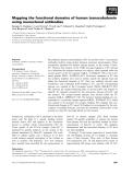 Báo cáo khoa học: Mapping the functional domains of human transcobalamin using monoclonal antibodies