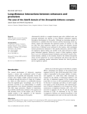 Báo cáo khoa học: Long-distance interactions between enhancers and promoters The case of the Abd-B domain of the Drosophila bithorax complex
