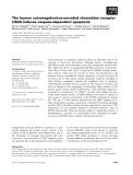 Báo cáo khoa học: The human cytomegalovirus-encoded chemokine receptor US28 induces caspase-dependent apoptosis