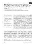 Báo cáo khoa học: Molecular cloning, expression analysis and functional confirmation of ecdysone receptor and ultraspiracle from the Colorado potato beetle Leptinotarsa decemlineata
