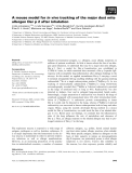 Báo cáo khoa học: A mouse model for in vivo tracking of the major dust mite allergen Der p 2 after inhalation