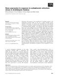 Báo cáo khoa học: Gene expression in response to endoplasmic reticulum stress in Arabidopsis thaliana
