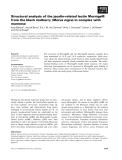 Báo cáo khoa học: Structural analysis of the jacalin-related lectin MornigaM from the black mulberry (Morus nigra) in complex with mannose