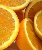 Danh mục trái cây giàu canxi