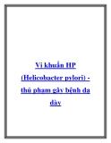 Vi khuẩn HP (Helicobacter pylori) thủ phạm gây bệnh dạ dày