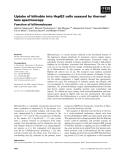 Báo cáo khoa học: Uptake of bilirubin into HepG2 cells assayed by thermal lens spectroscopy Function of bilitranslocase