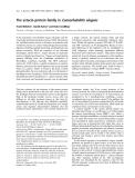 Báo cáo khoa học: The astacin protein family in Caenorhabditis elegans