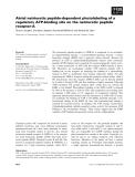 Báo cáo khoa học: Atrial natriuretic peptide-dependent photolabeling of a regulatory ATP-binding site on the natriuretic peptide receptor-A