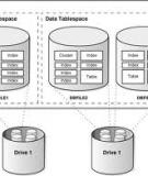 Oracle® Database Administrator's Reference