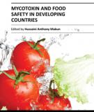 My cotoxin and food safety in developing countries
