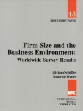 Firm size and the business environment: Worldwide survey results