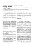 Báo cáo khoa học:  Reaction of human UMP-CMP kinase with natural and analog substrates