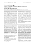Báo cáo khoa học: Human anionic trypsinogen Properties of autocatalytic activation and degradation and implications in pancreatic diseases