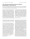 Báo cáo khoa học: Nitric oxide-induced epidermal growth factor-dependent phosphorylations in A431 tumour cells