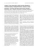 Báo cáo khoa học:  Complex II from phototrophic purple bacterium Rhodoferax fermentans displays rhodoquinol-fumarate reductase activity