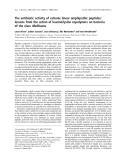 Báo cáo khoa học:  The antibiotic activity of cationic linear amphipathic peptides: lessons from the action of leucine/lysine copolymers on bacteria of the class Mollicutes