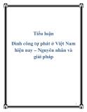 Tiểu luận Đình công tự phát ở Việt Nam hiện nay – Nguyên nhân và giải pháp